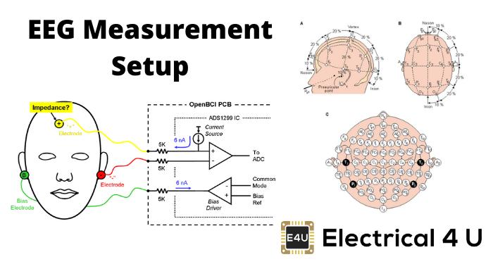 Eeg Measurement Setup