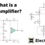 Biological Amplifiers and Types of Biological Amplifiers