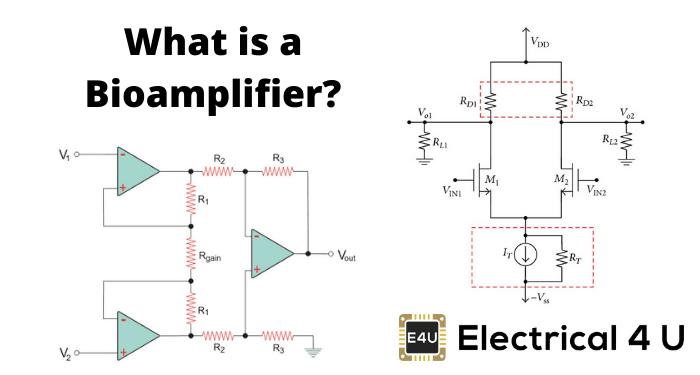What Is A Bioamplifier