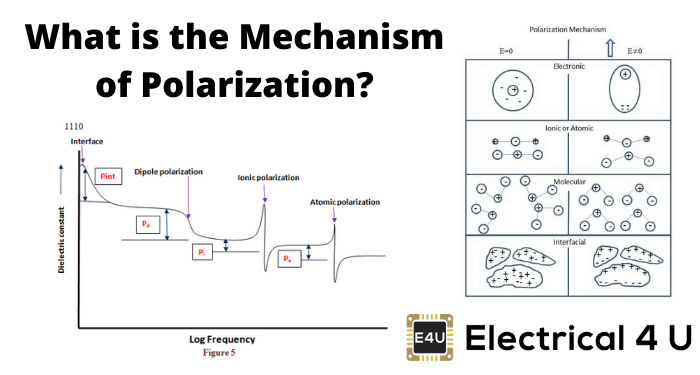 What Is The Mechanism Of Polarization